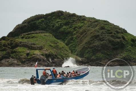 Excursiones a los Islotes de Puñihuil