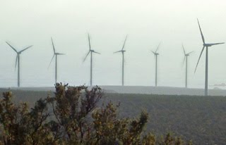 Parque eólico Canela